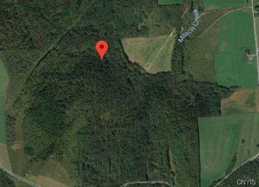 0 Cuyler Hill Road, Cuyler, NY 13158 (MLS #S1249604) :: MyTown Realty
