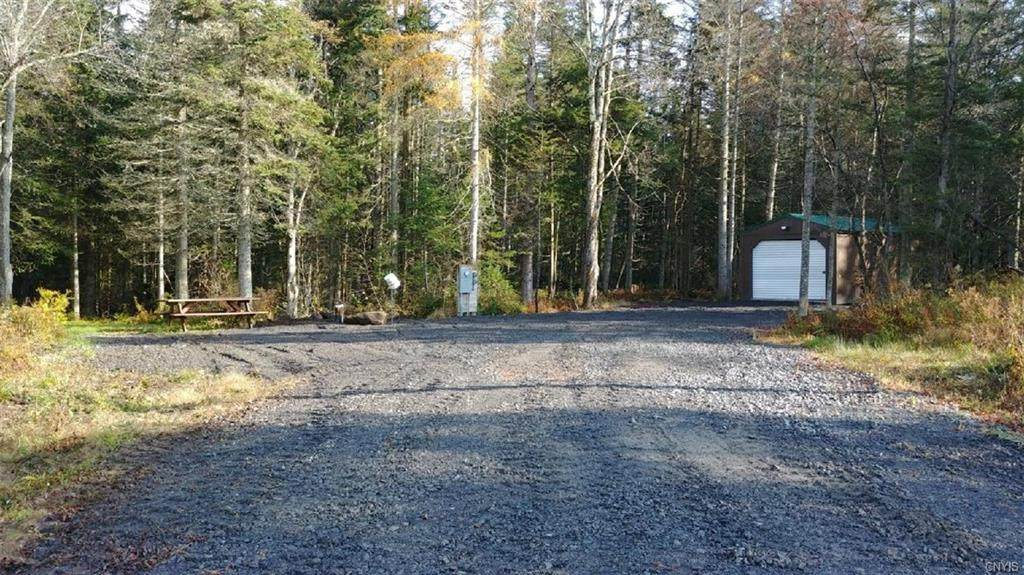 339 339 Nys Route 8 Road - Photo 1