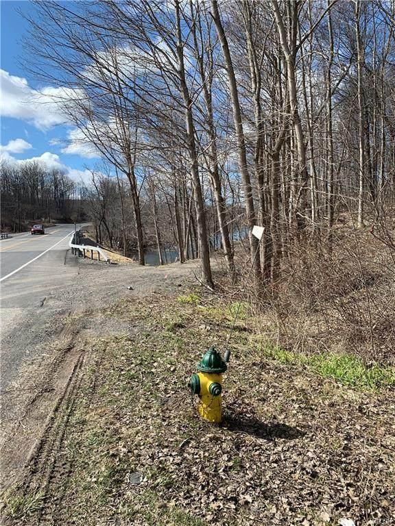 0 Otisco Valley Road, Marcellus, NY 13110 (MLS #S1259286) :: MyTown Realty