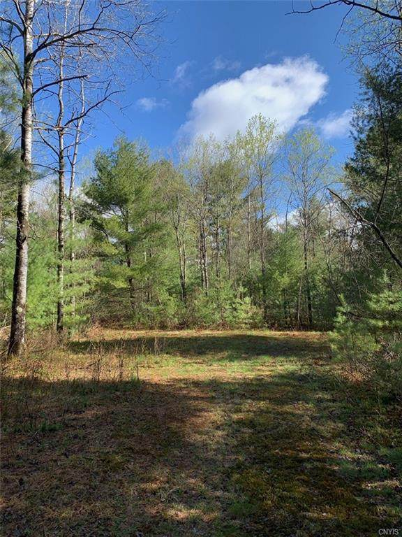 94 Evergreen Lane, Pitcairn, NY 13648 (MLS #S1265129) :: TLC Real Estate LLC