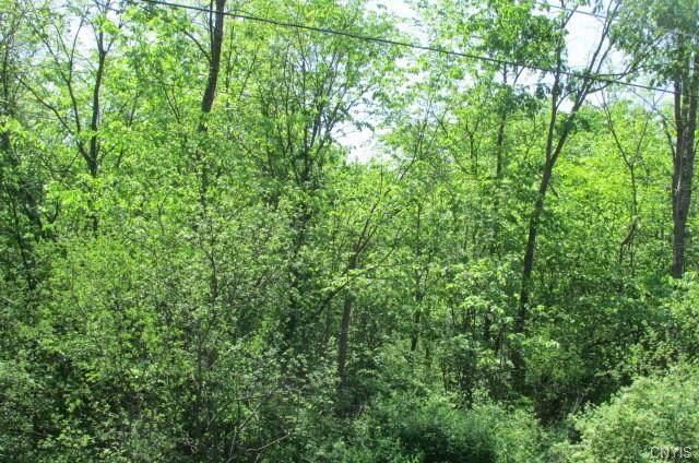 Lot 1N W Dead Creek Rd, Van Buren, NY 13112 (MLS #S1266044) :: MyTown Realty
