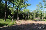114 Slosson Road, West Monroe, NY 13167 (MLS #S1266092) :: 716 Realty Group