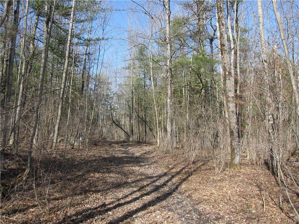 44 Acres County Route 120 - Photo 1