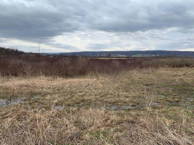 00 Gun Club Road, Little Falls-Town, NY 13365 (MLS #S1274461) :: Thousand Islands Realty