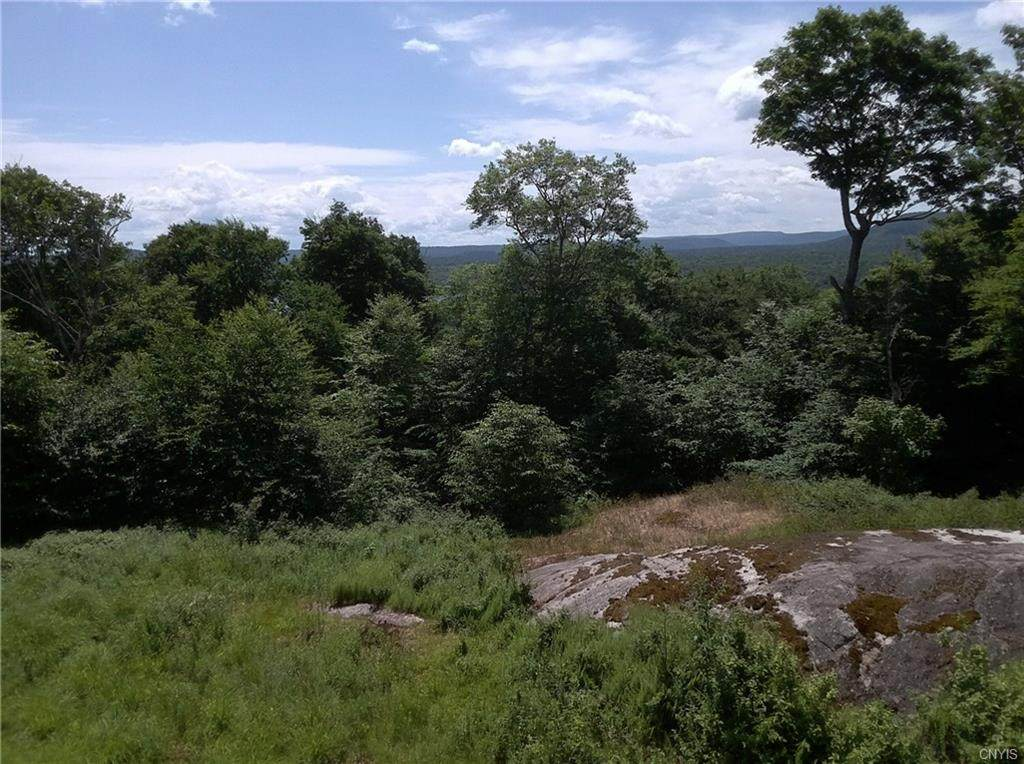 0 Summit Place - Photo 1