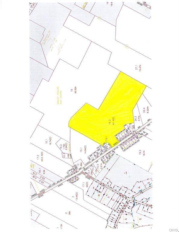 0 Mohawk Street, Paris, NY 13456 (MLS #S1275854) :: TLC Real Estate LLC