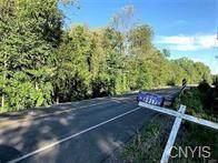 000 Manlius Road - Photo 1