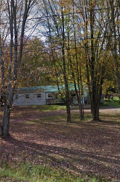 129 Shanty Creek Road, Hastings, NY 13036 (MLS #S1278128) :: Robert PiazzaPalotto Sold Team