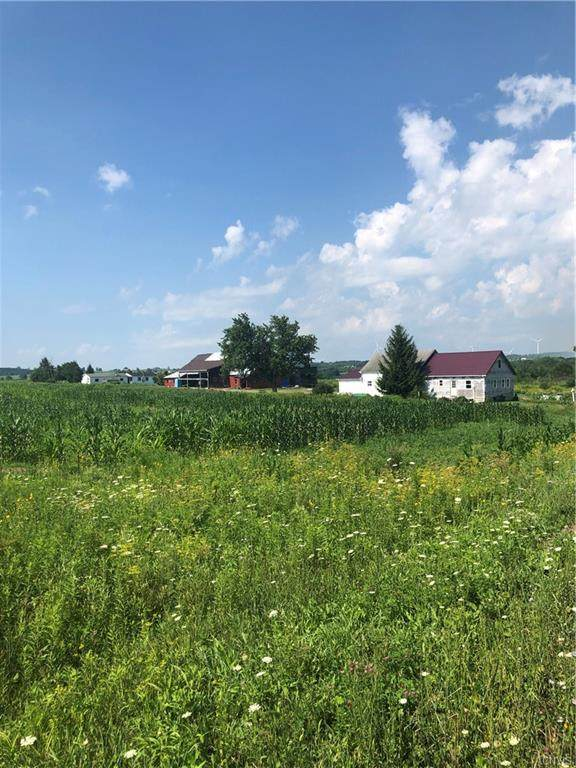 1578 State Route 29, Little Falls-Town, NY 13365 (MLS #S1281920) :: Avant Realty