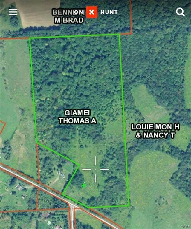 3833 Stramba Road, Solon, NY 13101 (MLS #S1283918) :: Lore Real Estate Services