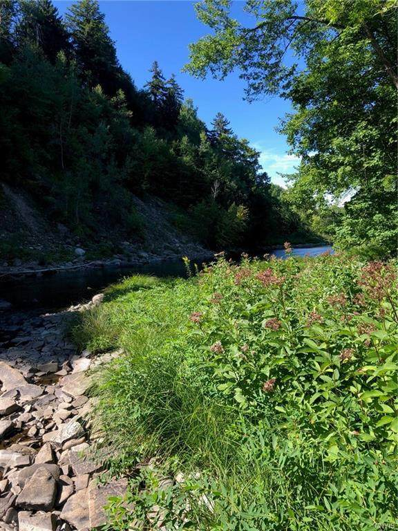 O Kotary Road, Lewis, NY 13325 (MLS #S1293846) :: Thousand Islands Realty