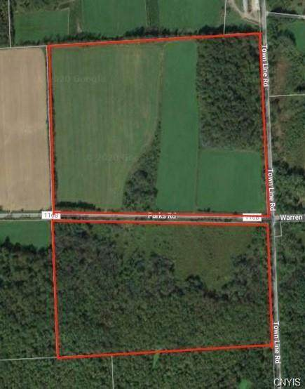 0 Parks Road, Homer, NY 13077 (MLS #S1296986) :: Robert PiazzaPalotto Sold Team
