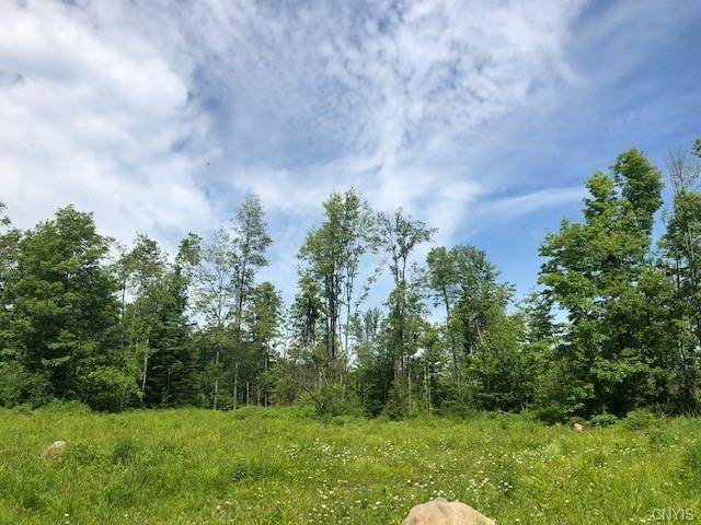 685 Wheelertown Road, Russia, NY 13438 (MLS #S1297175) :: MyTown Realty