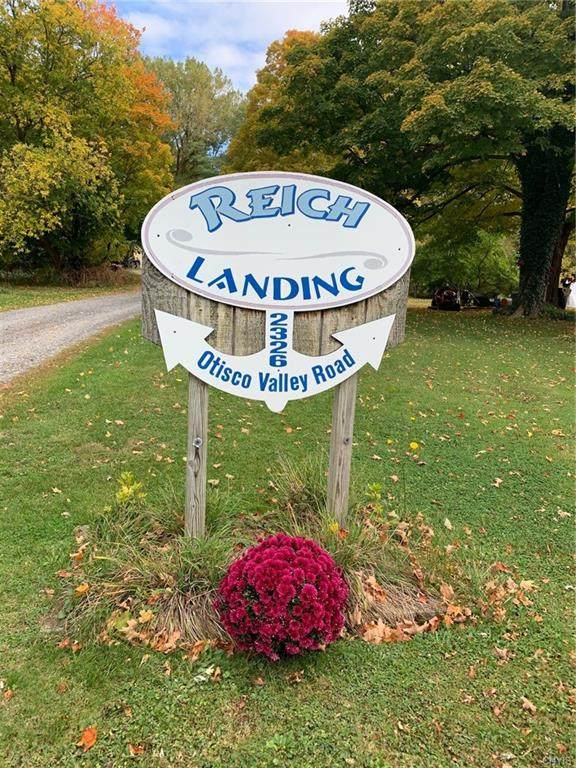0 Reichs Landing Lot 9 (Otisco Valley Rd) Road, Otisco, NY 13110 (MLS #S1300745) :: Thousand Islands Realty
