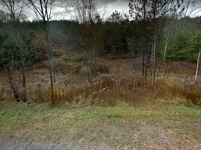 0 Lincklaen Road, De Ruyter, NY 13052 (MLS #S1303106) :: MyTown Realty