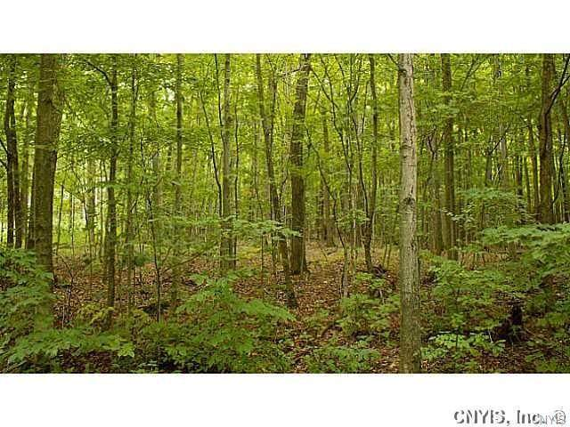 Lot 54 Puckers Street, Scott, NY 13077 (MLS #S1303263) :: MyTown Realty