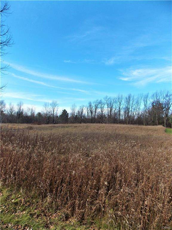 0 Co Route 41, Wilna, NY 13619 (MLS #S1306013) :: BridgeView Real Estate Services