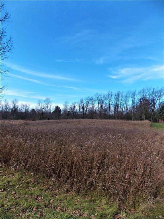 0 Co Route 41, Wilna, NY 13619 (MLS #S1306024) :: BridgeView Real Estate Services