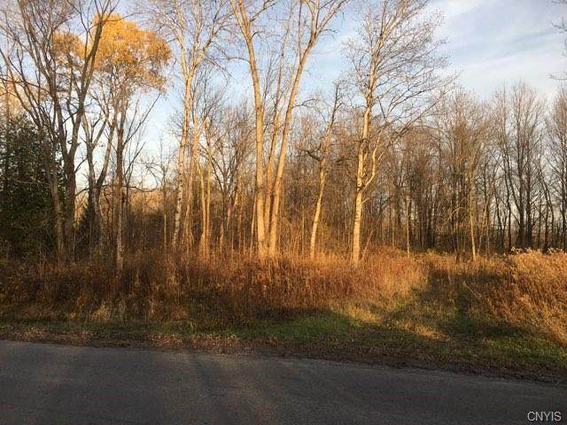 5914 Happy Valley Road, Verona, NY 13478 (MLS #S1306829) :: TLC Real Estate LLC