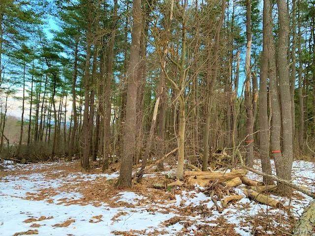 01 Rouse Road, Minden, NY 13339 (MLS #S1313543) :: Mary St.George | Keller Williams Gateway