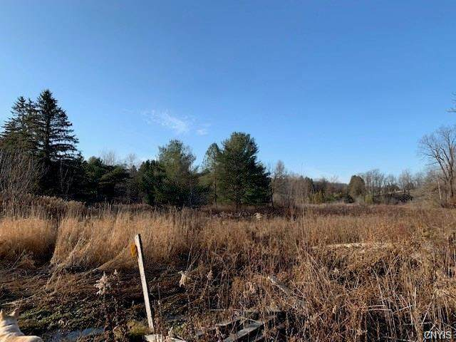 0 Erieville Road, Nelson, NY 13061 (MLS #S1313730) :: 716 Realty Group