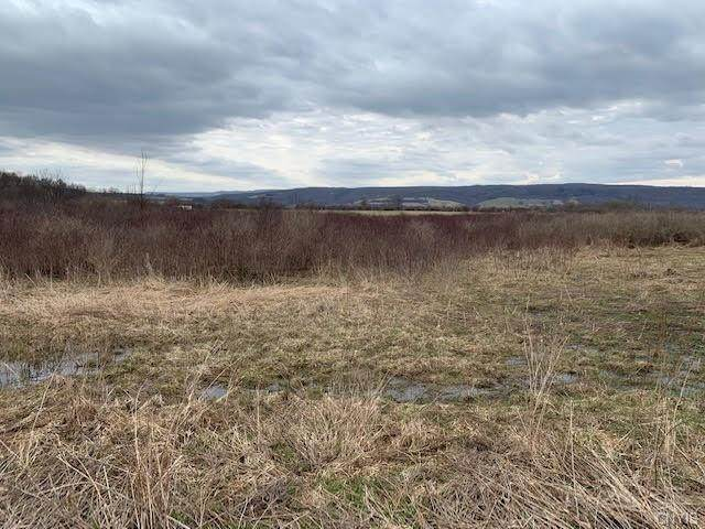 00 Gun Club Road, Little Falls-Town, NY 13365 (MLS #S1316024) :: 716 Realty Group