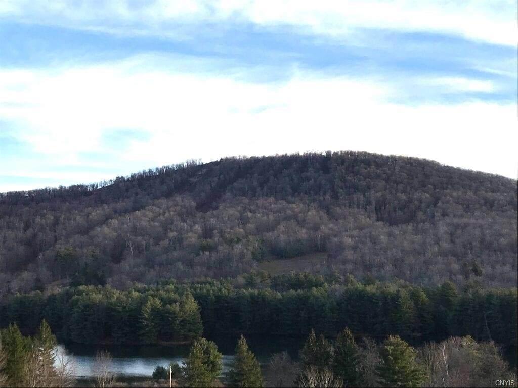 00 Castle Mountain Road - Photo 1