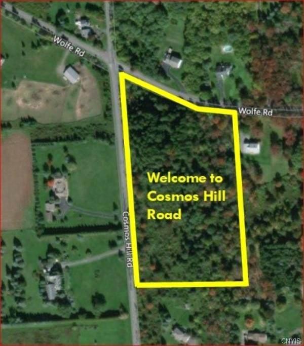 000 Cosmos Hill Road, Homer, NY 13077 (MLS #S1330076) :: Serota Real Estate LLC