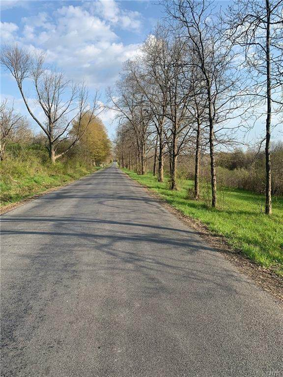 0 Route 20 Road, Sennett, NY 13021 (MLS #S1333339) :: TLC Real Estate LLC