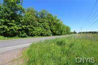 1731 State Route 49, Constantia, NY 13044 (MLS #S1336467) :: 716 Realty Group