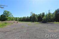 1731 State Route 49, Constantia, NY 13044 (MLS #S1336475) :: 716 Realty Group