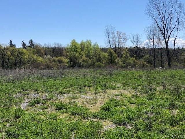 0 Us Route 11 Highway, Le Ray, NY 13616 (MLS #S1336879) :: BridgeView Real Estate Services