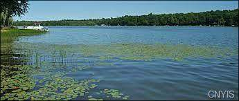 0 Duck Lake Road, Conquest, NY 13143 (MLS #S1341318) :: TLC Real Estate LLC