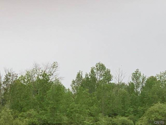15Ac Frog City Road, Danube, NY 13339 (MLS #S1344000) :: Thousand Islands Realty