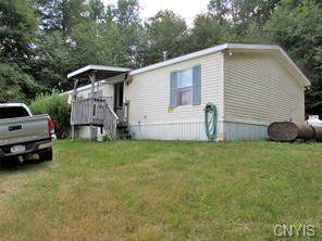 396 Round Pond Road, Smithville, NY 13841 (MLS #S1350932) :: 716 Realty Group