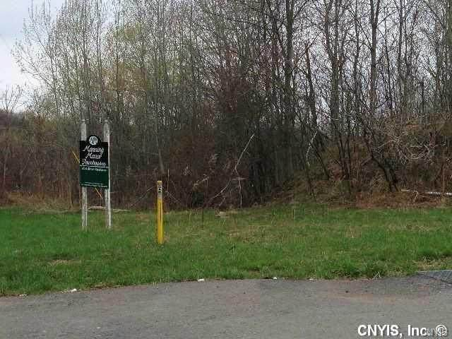 235 Ellen Street, Oswego-City, NY 13126 (MLS #S1352816) :: BridgeView Real Estate Services
