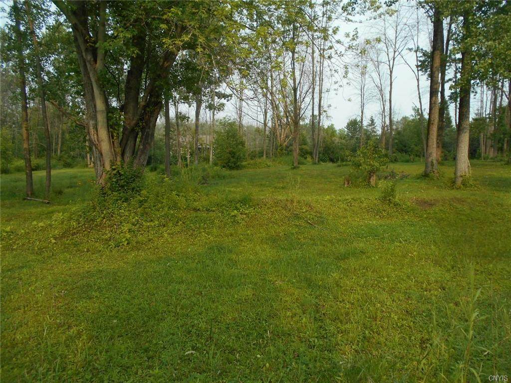 LOT 1B Coulter Cove - Photo 1