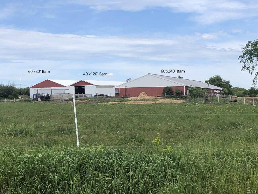24719 Co Route 59 - Photo 1