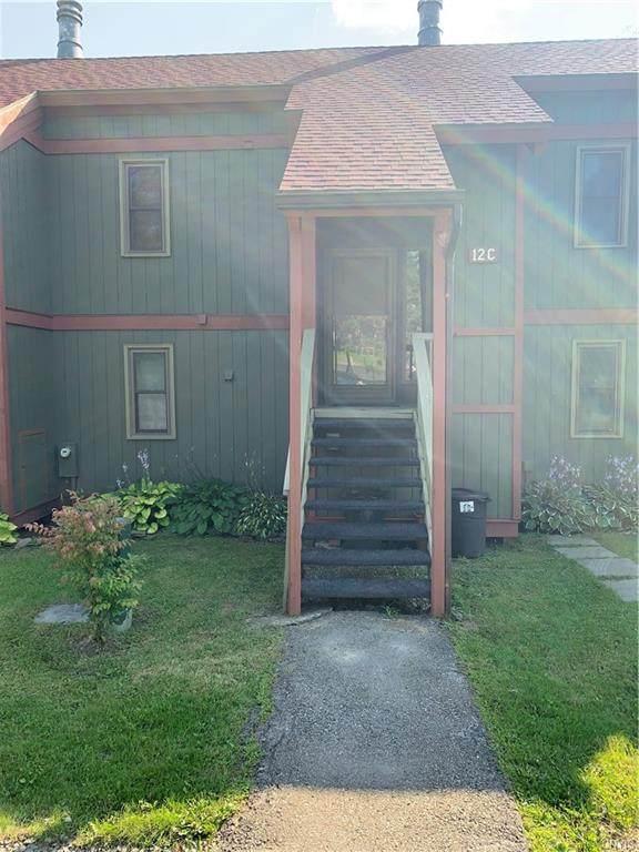 2027 Alpha Circle 12C Street, Virgil, NY 13045 (MLS #S1357718) :: BridgeView Real Estate
