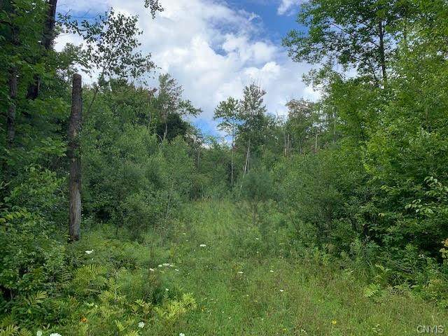 00 County Highway 119, Stratford, NY 13470 (MLS #S1357887) :: BridgeView Real Estate