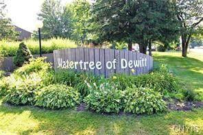 300 Watertree Drive - Photo 1