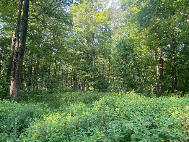 0 Buyea Road, Lincoln, NY 13032 (MLS #S1362387) :: BridgeView Real Estate