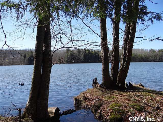 00 Beaver Lake Subdvsn, Smyrna, NY 13464 (MLS #S289641) :: Thousand Islands Realty