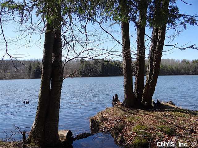 00 Beaver Lake Subdvsn, Smyrna, NY 13464 (MLS #S289641) :: The CJ Lore Team | RE/MAX Hometown Choice