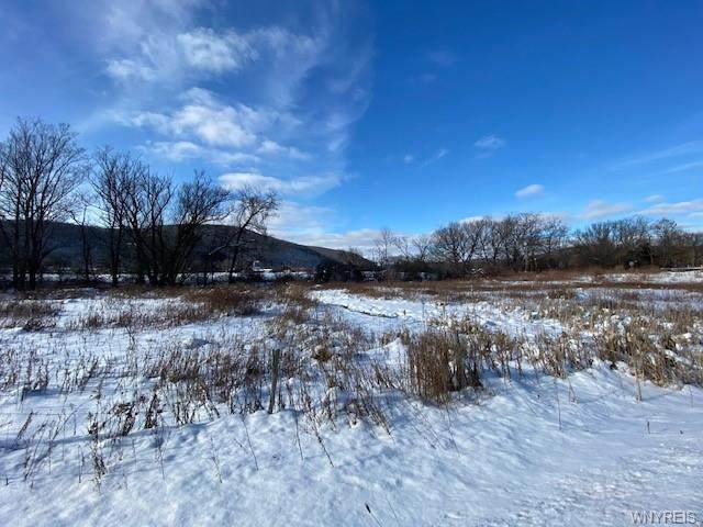 Lot A Route 98 Road, Great Valley, NY 14741 (MLS #B1299573) :: MyTown Realty