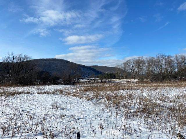 Lot B Route 98 Road, Great Valley, NY 14741 (MLS #B1299577) :: MyTown Realty