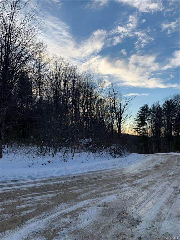 0 Hungry Hollow Road, Little Valley, NY 14755 (MLS #B1308912) :: Mary St.George | Keller Williams Gateway