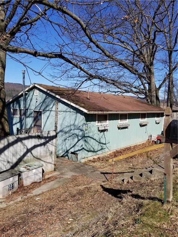 981 E Lake Road, Barrington, NY 14837 (MLS #R1262648) :: Robert PiazzaPalotto Sold Team