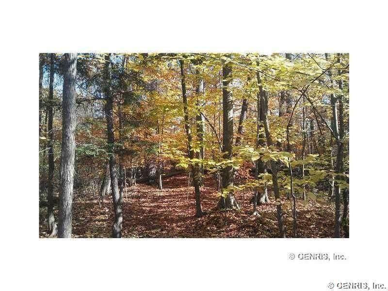45 Shorewood Trail - Photo 1