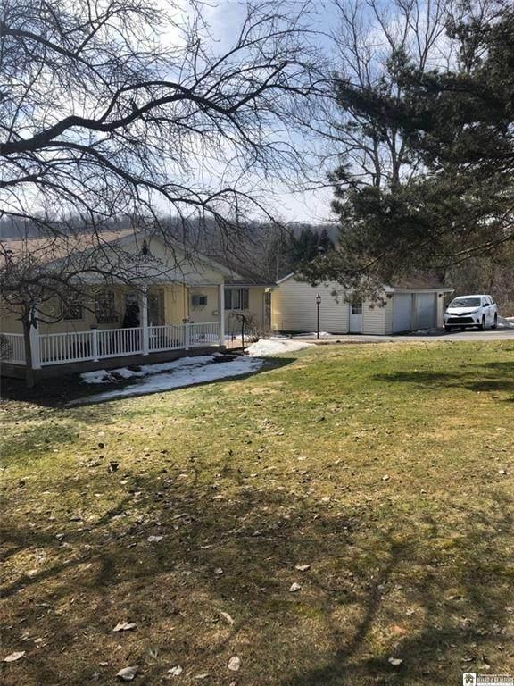 3955 Dry Brook Road, Poland, NY 14733 (MLS #R1322980) :: MyTown Realty